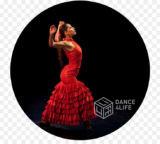 Записывайтесь в группу Фламенко!!!